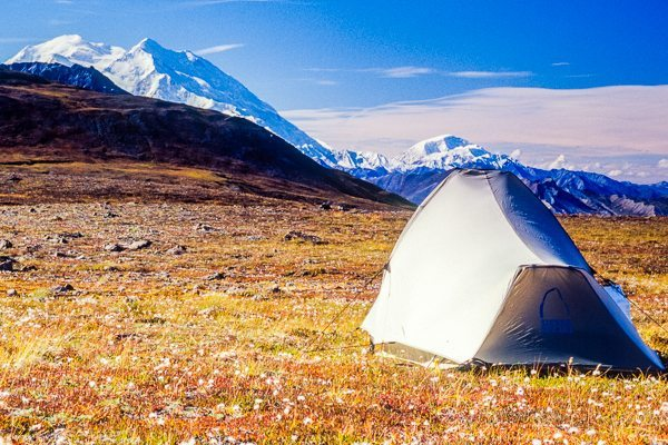 Camping in Denali National Park