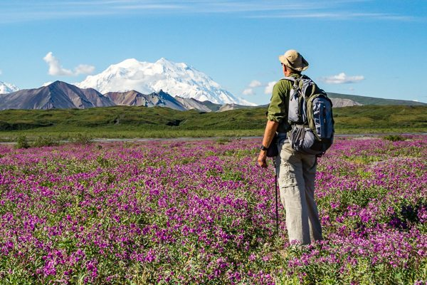 Denali National Park hiker with Mount McKinley
