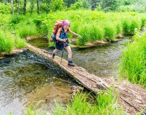Using a log to cross a stream near the start of Ermine Hill Trail, Denali State Park, Alaska.