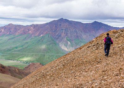 Hiker in Denali National Park