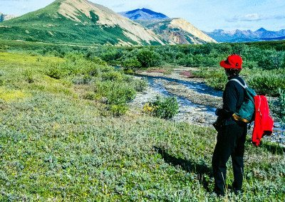 Hiker in Polychrome area